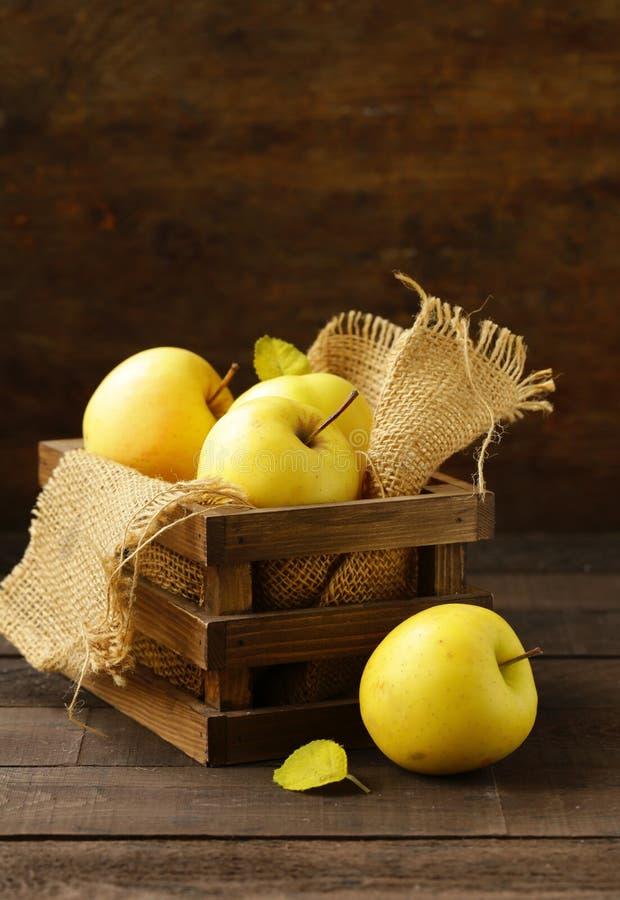 Mogna gula organiska äpplen arkivfoto