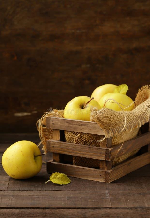 Mogna gula organiska äpplen royaltyfri bild