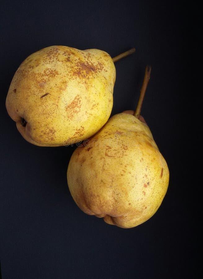Mogna gula päron, organisk mat Nytt, mjukt och läckert bär fruktt sunt arkivbild