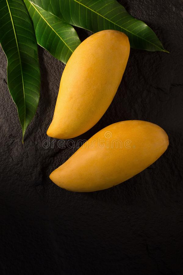Mogna guld- mango med bladet på mörk bakgrund fotografering för bildbyråer