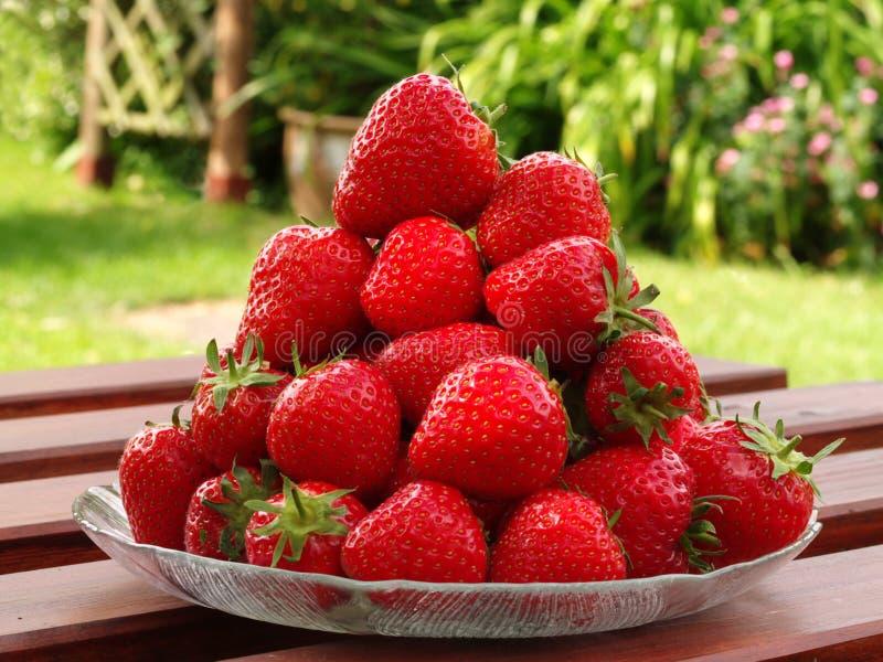 mogna jordgubbar för ny stapel arkivfoto
