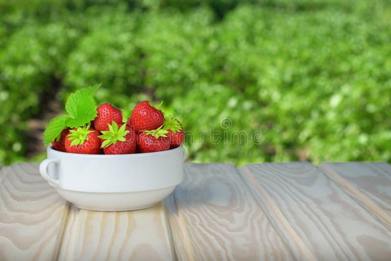 Mogna jordgubbar i en vit ask på en lantlig trätabell Bakgrund är grönt suddigt royaltyfri bild