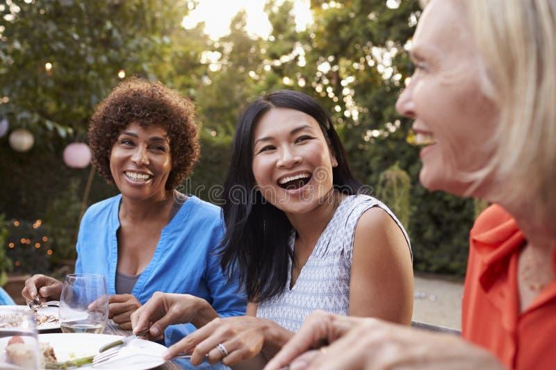 Mogna kvinnliga vänner som tycker om utomhus- mål i trädgård arkivbilder