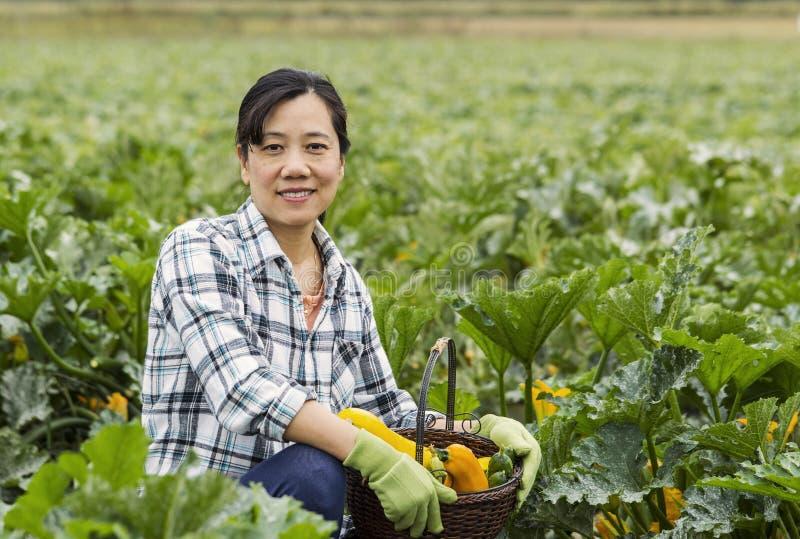 Mogna kvinnor med korgen av grönsaker arkivfoton