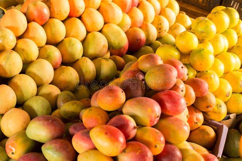 Mogna mango på marknadsföra royaltyfria foton