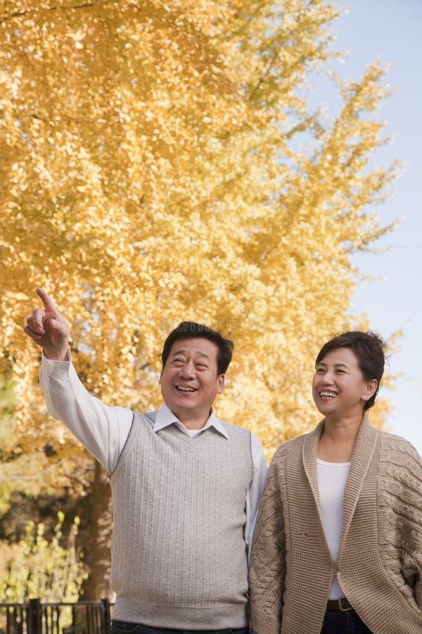 Mogna par som tillsammans går i parkera i hösten som pekar arkivbild