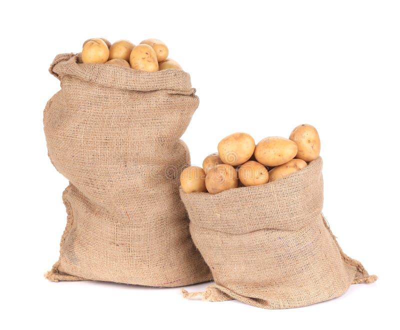 Mogna potatisar i säckvävsäckar royaltyfria foton