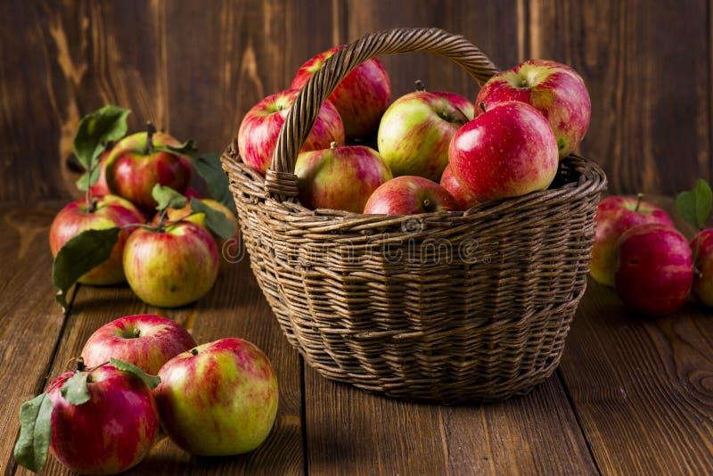 Mogna röda äpplen i en korg royaltyfri fotografi