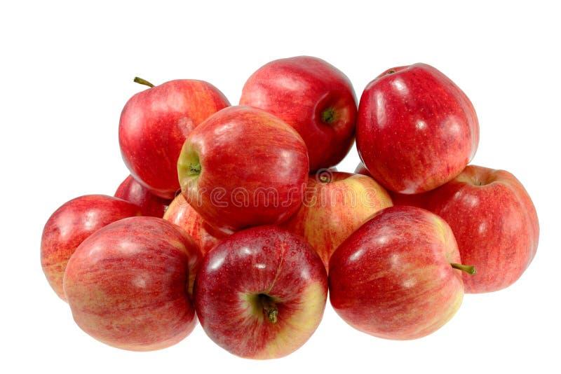 Mogna röda äpplen på en vit bakgrund arkivfoto
