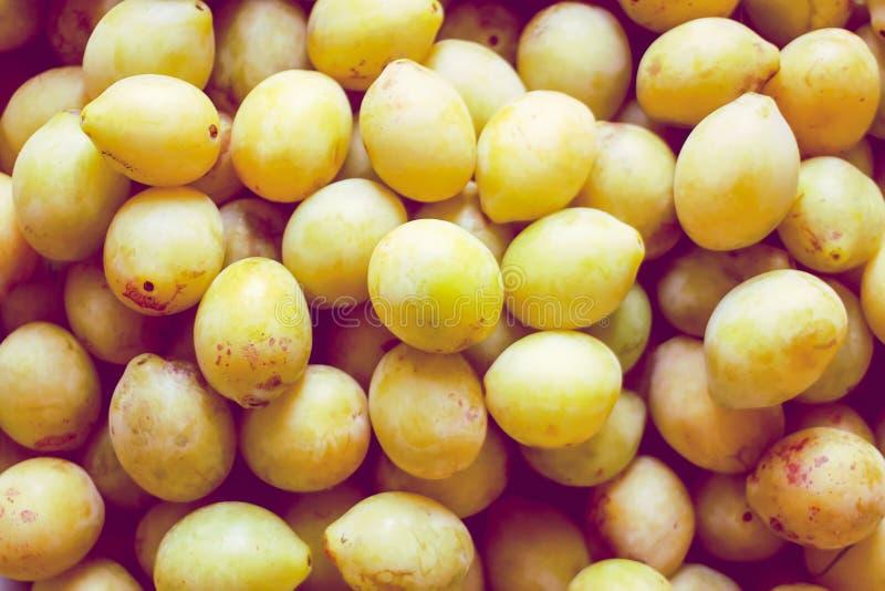 Mogna saftiga plommonfrukter stänger sig upp Nya organiska plommoner som in växer arkivbild