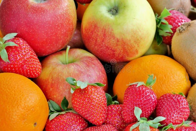 Mogna saftiga sunda frukter av olika f?rger royaltyfri fotografi