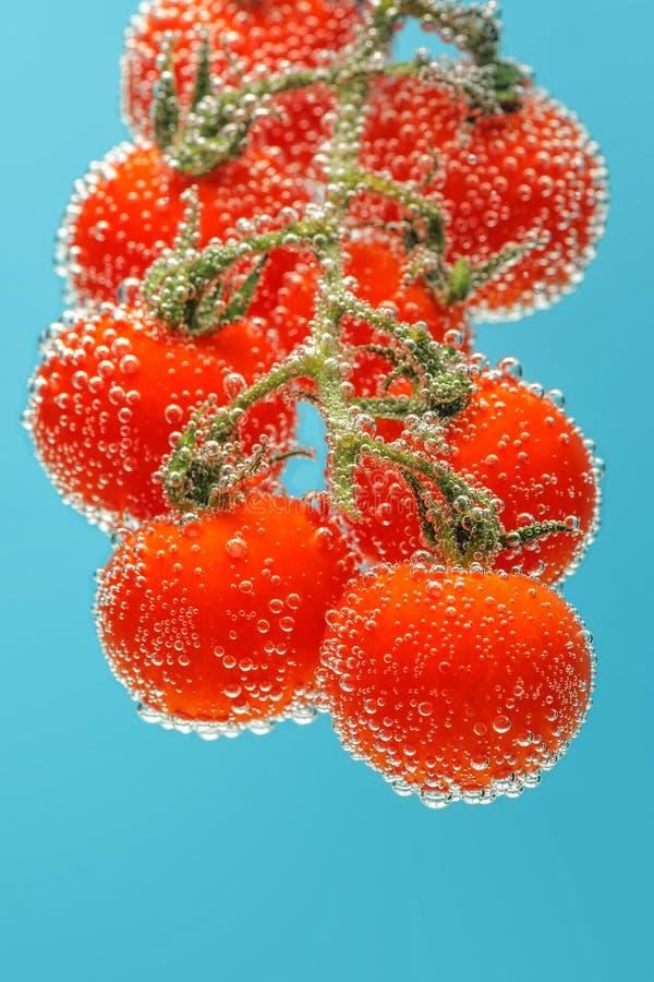 mogna tomater f?r Cherryred royaltyfri bild
