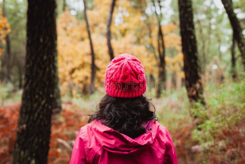 Mognad kvinna som fotvandrar i skogen royaltyfri fotografi
