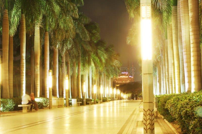 Mohamed Ali Mosque photographie stock libre de droits
