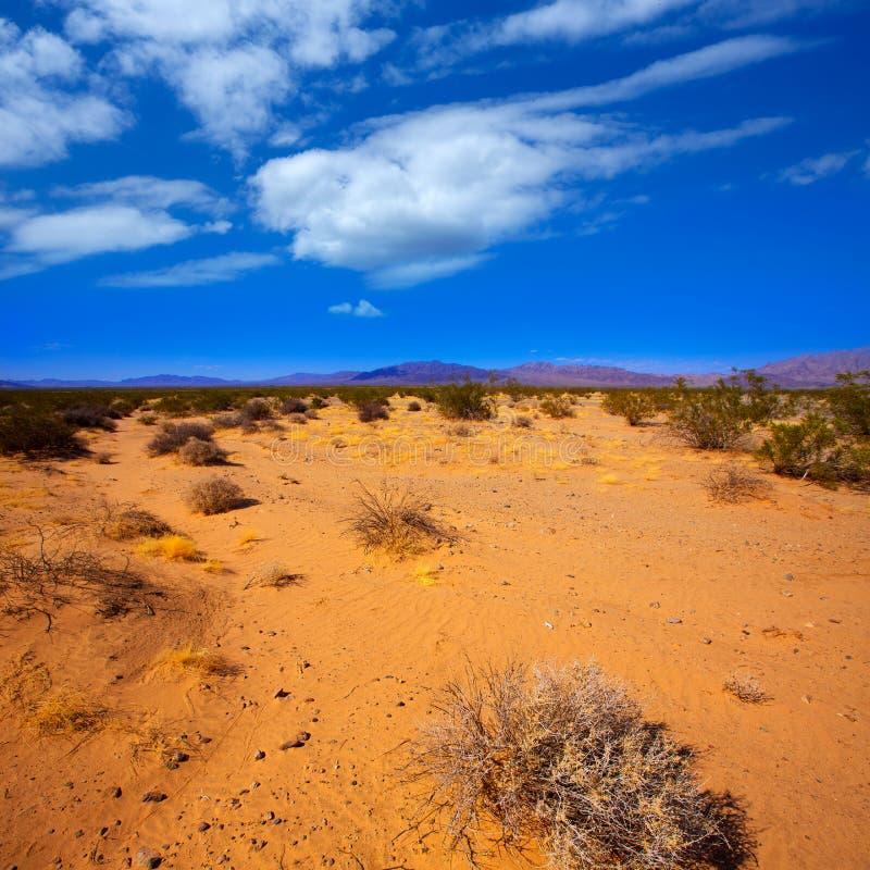 Mohaveöken i den Kalifornien palmliljadalen arkivfoton