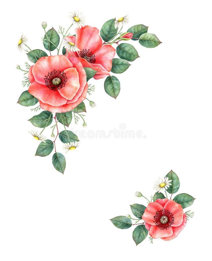 Mohnblume und chamomille Blumenzusammensetzung Hand gezeichnete Aquarellillustration lizenzfreie abbildung