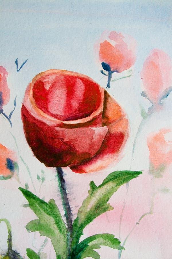 Mohnblumeblumen-Aquarell stock abbildung