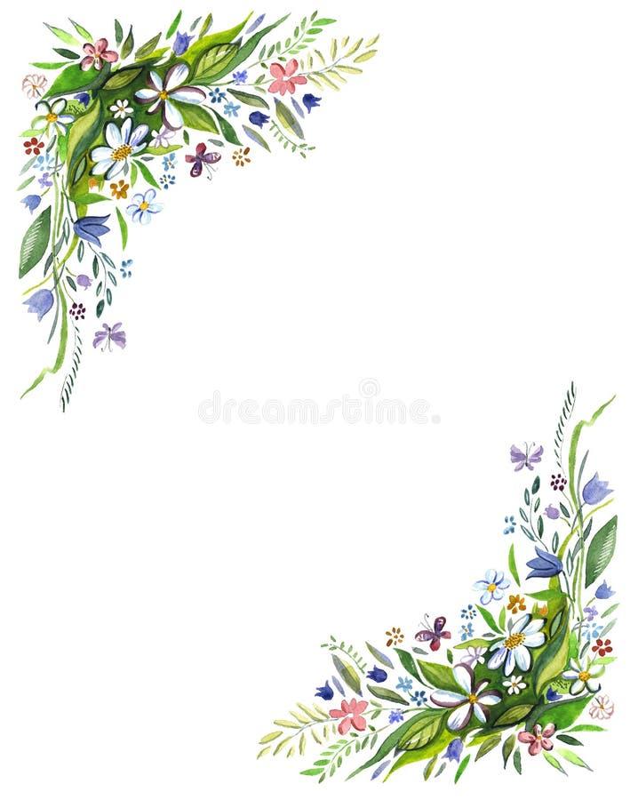 Mohnblumen stock abbildung