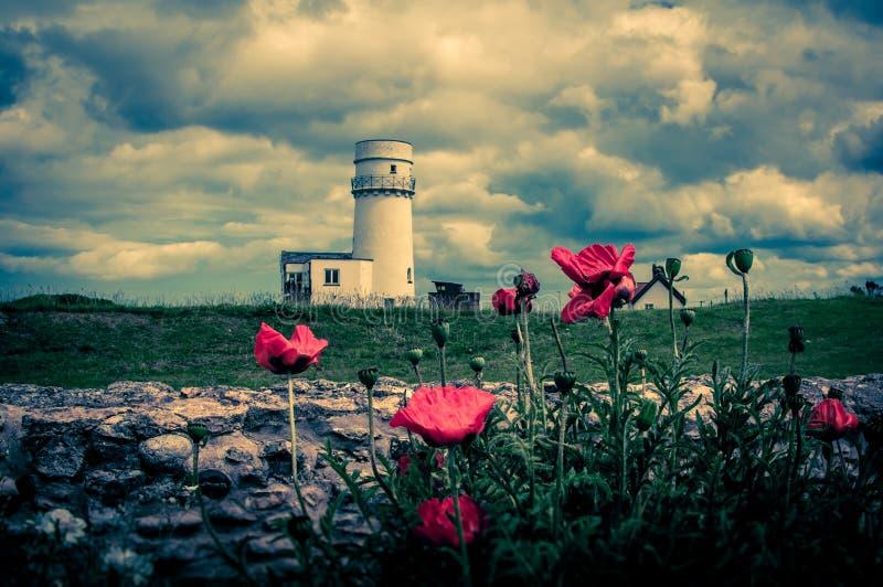 Mohnblumen an altem Hunstanton-Leuchtturm lizenzfreie stockbilder