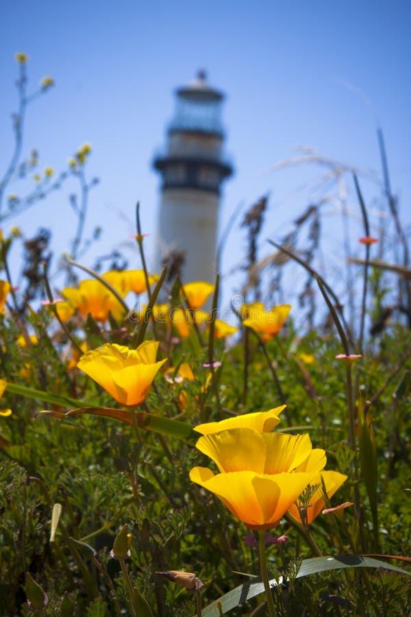 Mohnblumen und Leuchtturm lizenzfreies stockfoto
