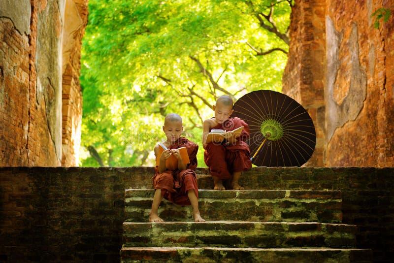 Moine bouddhiste lisant dehors photographie stock libre de droits