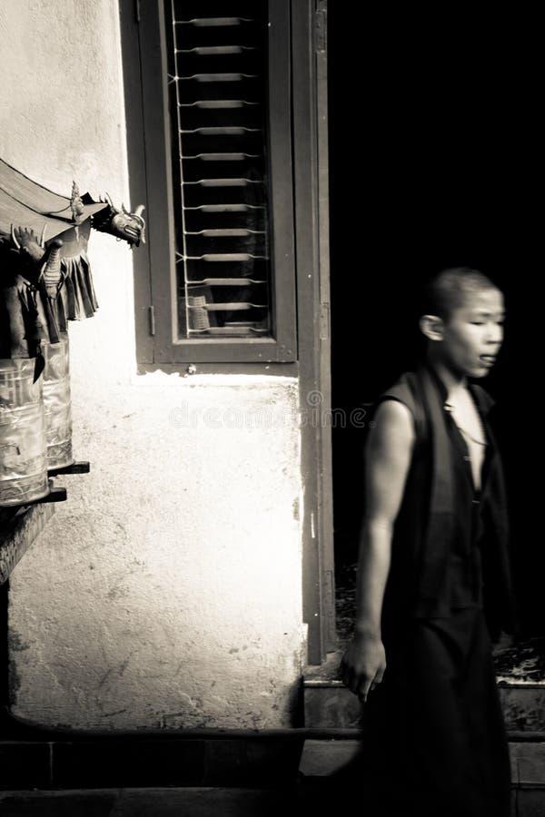 Moine de temple tibétain de Drubgon Jangchup Choeling, Katmandou, Népal image libre de droits