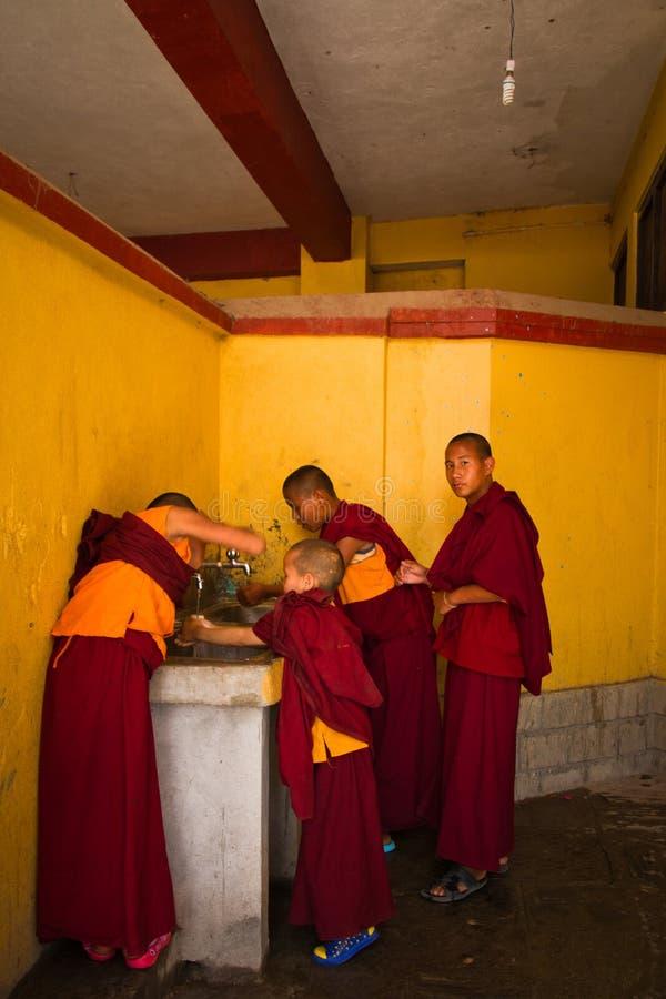 Moines bouddhistes de novice de Boudhanath, Katmandou, Népal photographie stock libre de droits
