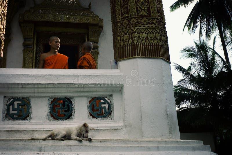 moines bouddhistes discutant quelque chose au balcon de leur monastère décoré avec des symboles de svastika image libre de droits