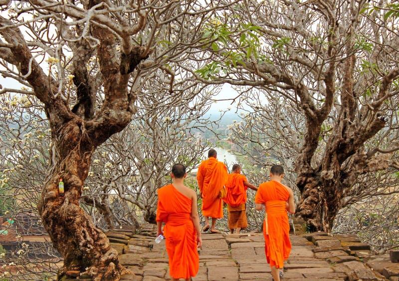 Moines chez Wat Phu, Laos photo stock