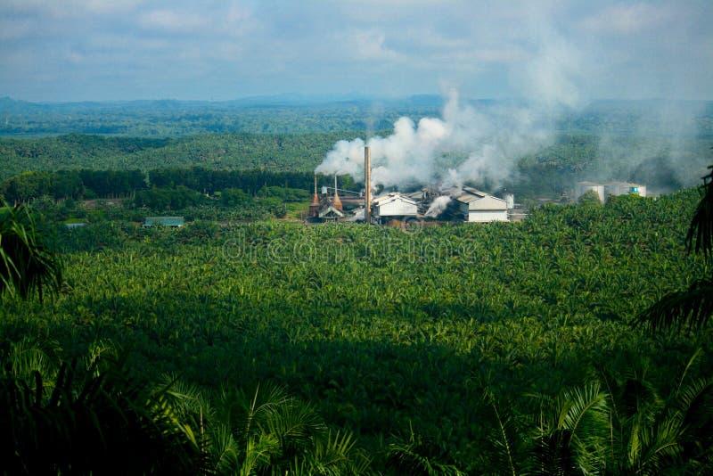 Moinho de petróleo da palma foto de stock
