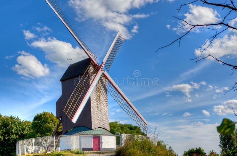 Moinho de vento antigo em Bruges/Bruges, Bélgica imagem de stock