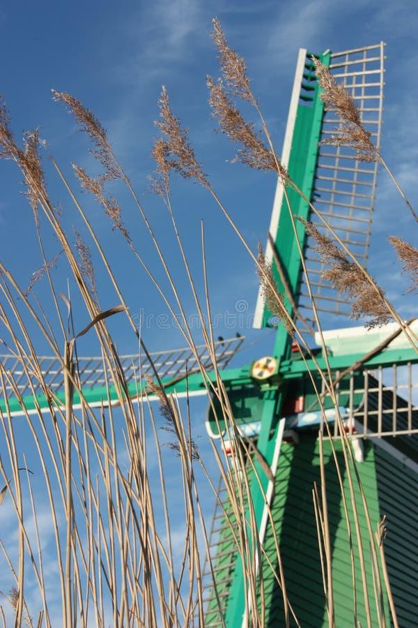 Moinho de vento antigo holandês construído da madeira estrutura típica dos Países Baixos ferramentas velhas do trabalho no rio na fotografia de stock
