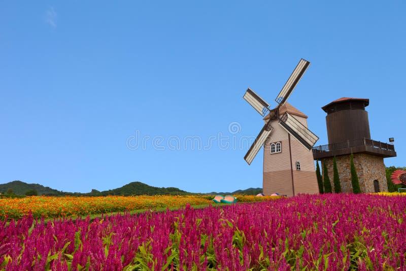 Moinho de vento com céu azul imagem de stock