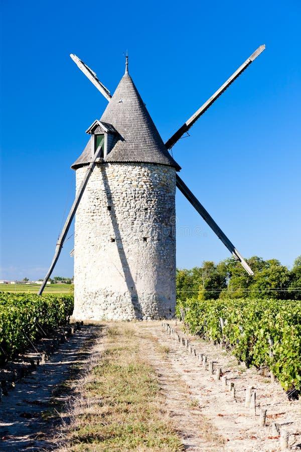 moinho de vento com o vinhedo perto de Blaignan, região do Bordéus, França imagens de stock
