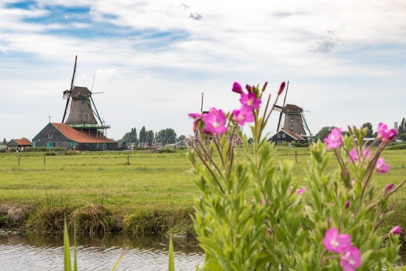 Moinho de vento 2 da Holanda imagem de stock