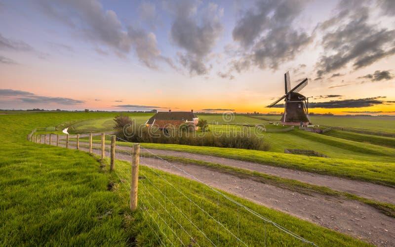 Moinho de vento de madeira holandês na paisagem gramínea lisa imagens de stock royalty free