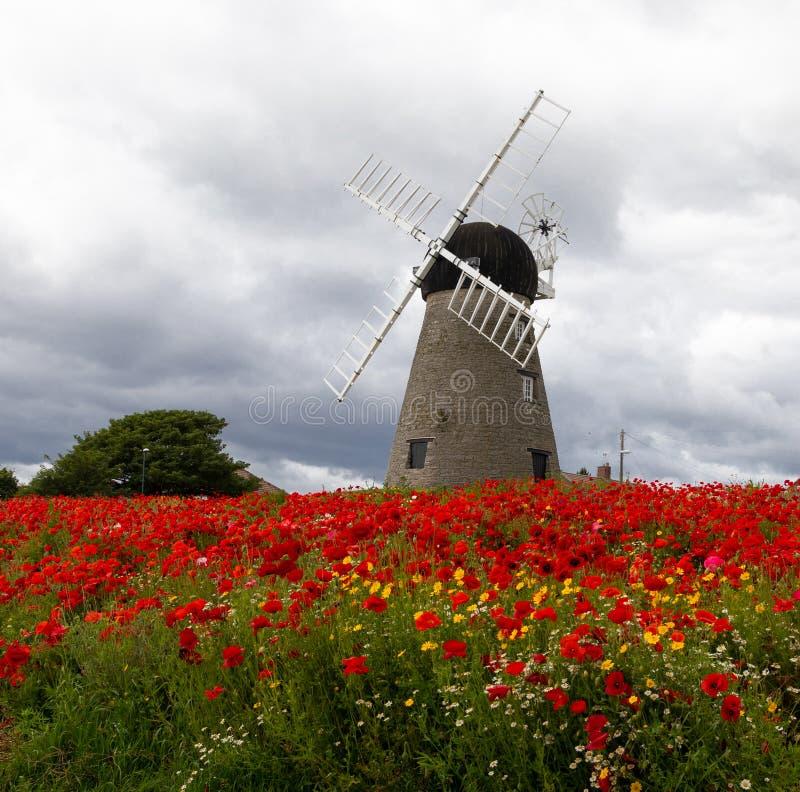 Moinho de vento do século XVI de Whitburn foto de stock royalty free