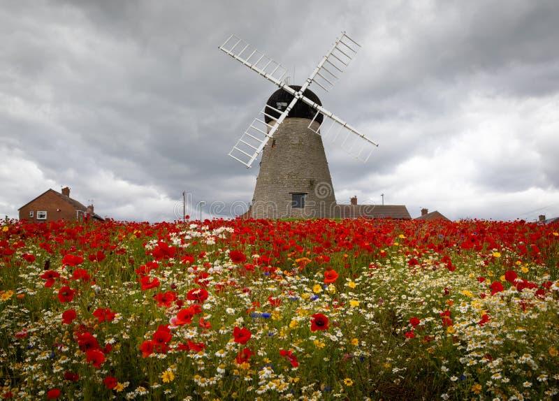 Moinho de vento do século XVI de Whitburn foto de stock