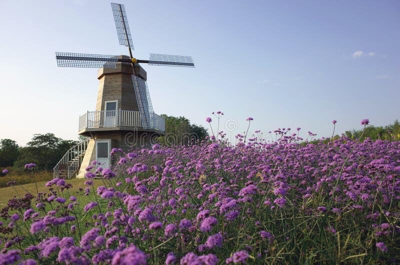 Moinho de vento e jardim fotos de stock royalty free