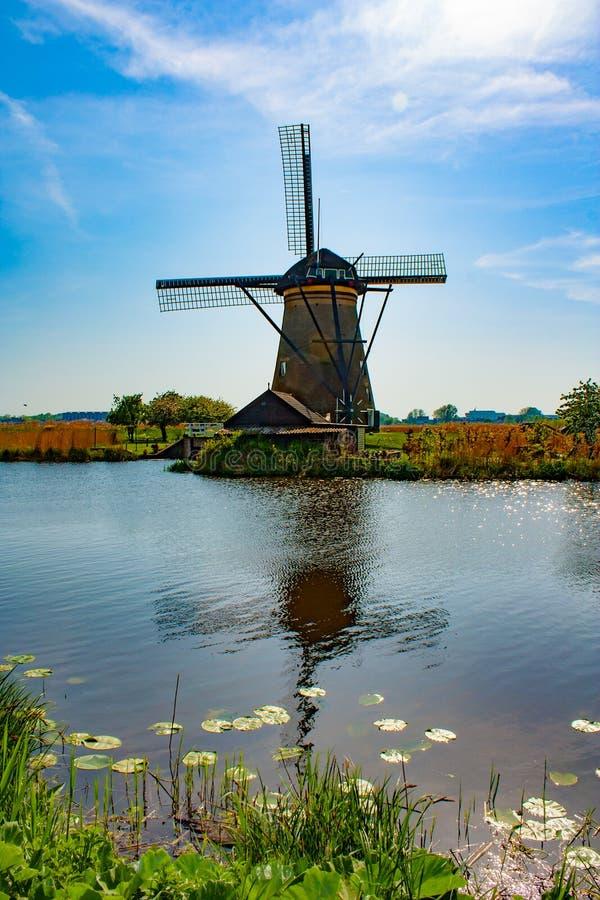Moinho de vento em Kinderdijk - dia ensolarado bonito imagem de stock royalty free
