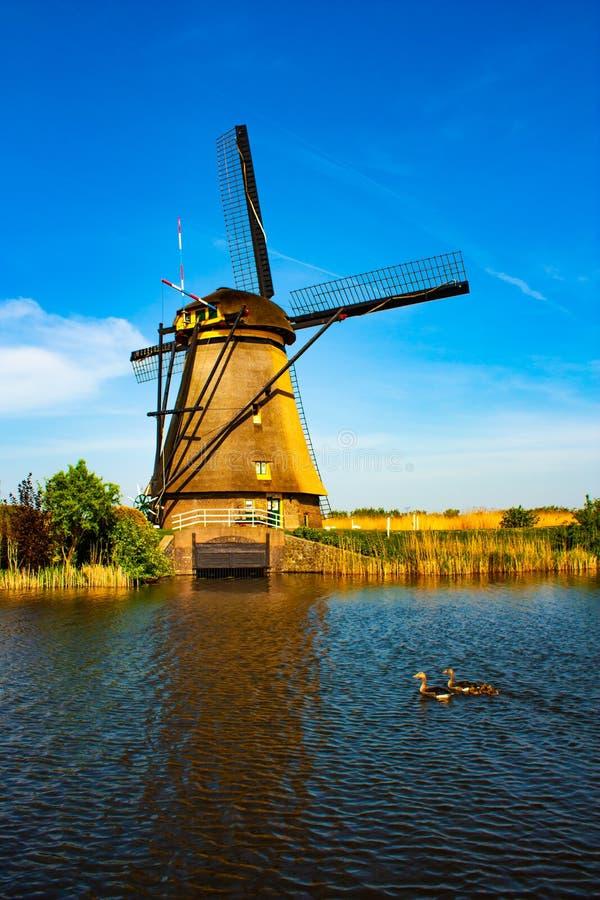 Moinho de vento em Kinderdijk - dia ensolarado bonito foto de stock royalty free