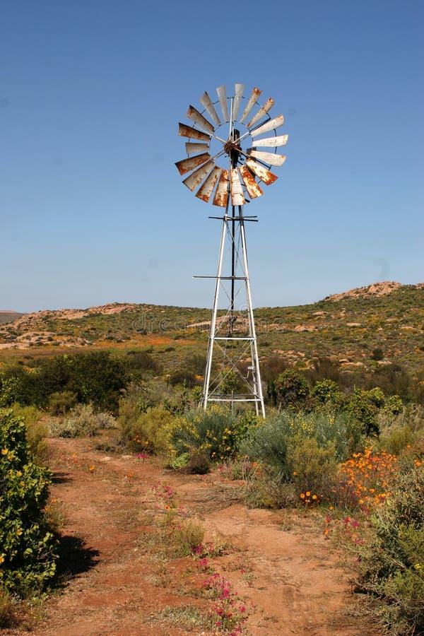 Moinho de vento em Namakwaland, cabo do norte foto de stock royalty free