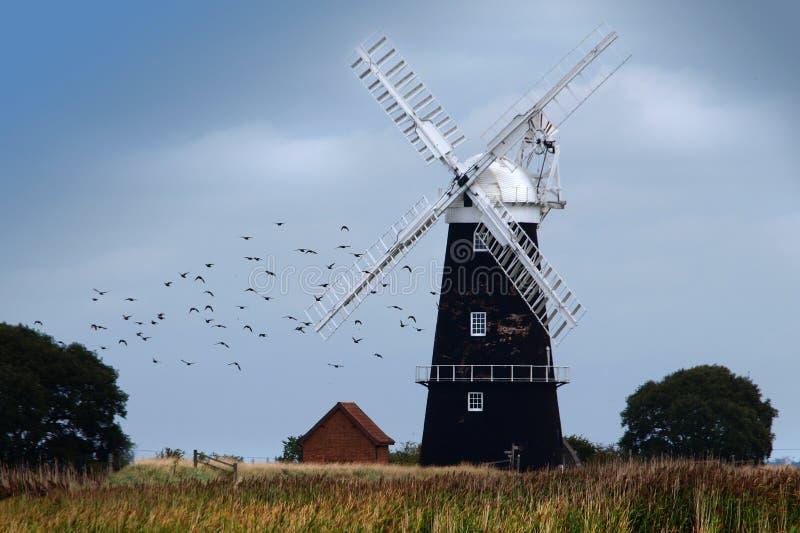 Moinho de vento em Norfolk Broads fotos de stock royalty free