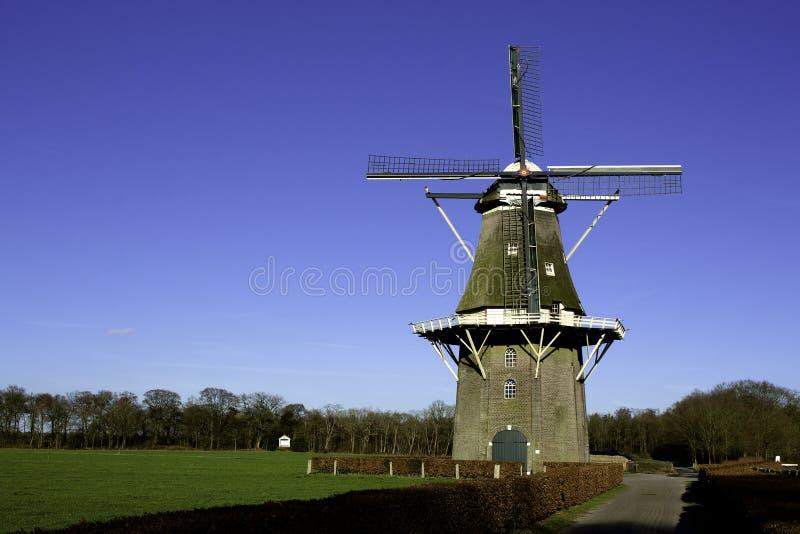 Moinho de vento holandês foto de stock royalty free