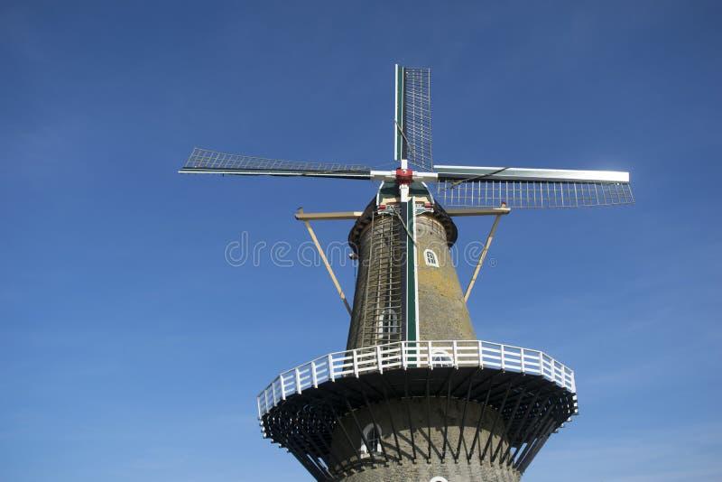 Moinho de vento holandês clássico imagem de stock