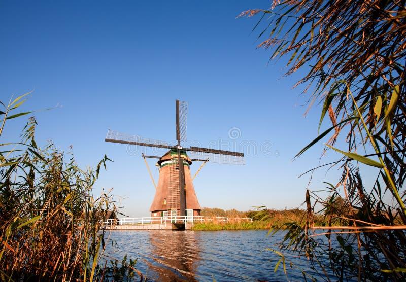 Moinho de vento holandês tradicional fotografia de stock