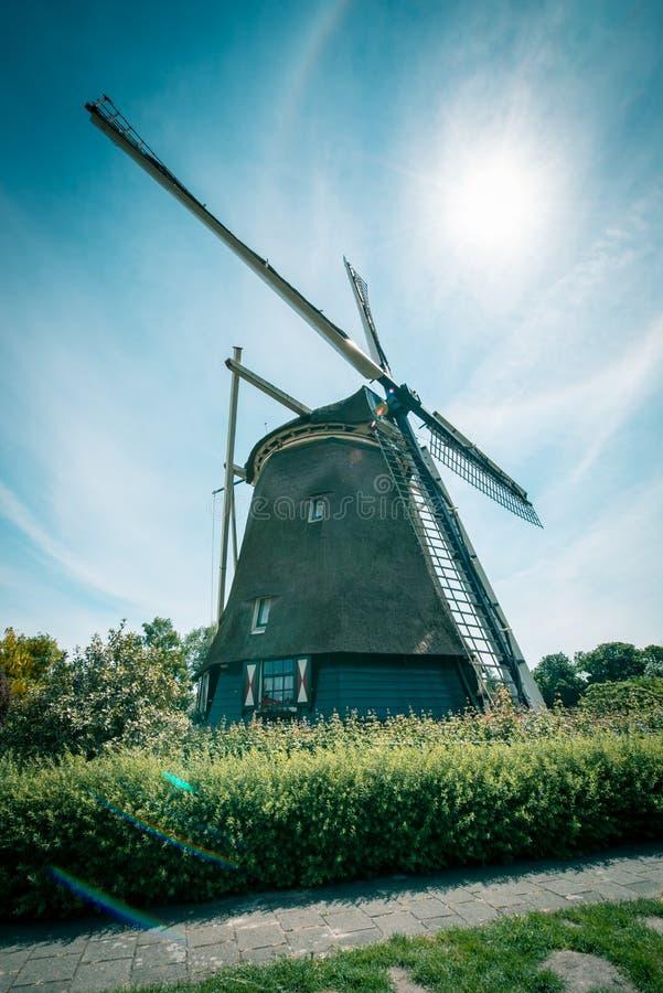 Moinho de vento holand?s velho, Amsterd?o De Riekermolen, Amstelpark, rio de Amstel imagem de stock