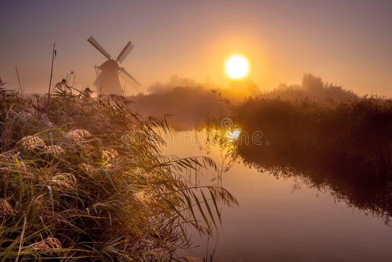 Moinho de vento na região pantanosa fotografia de stock