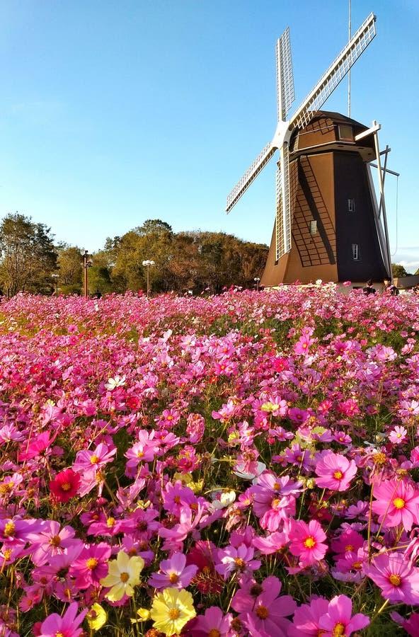 moinho de vento no jardim foto de stock