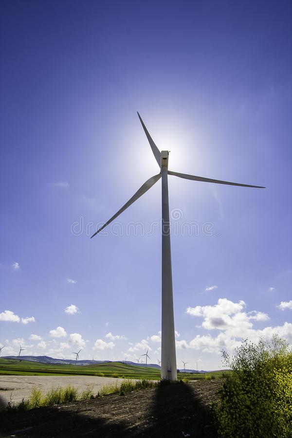 Moinho de vento no prado fotos de stock